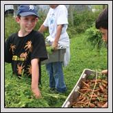 Gwynn Valley Cultivates Children's Farm Understanding