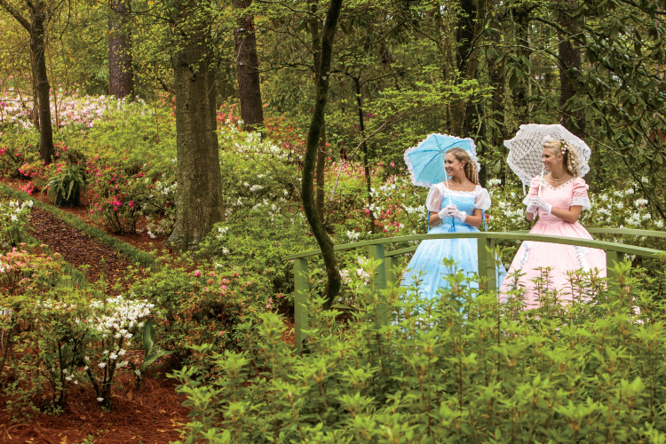 Azalea Belles at the North Carolina Azalea Festival