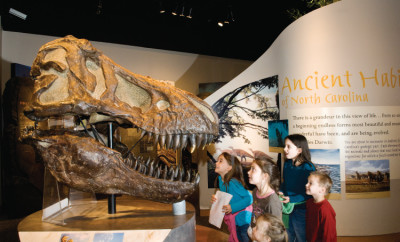 NC Museum of Natural Sciences