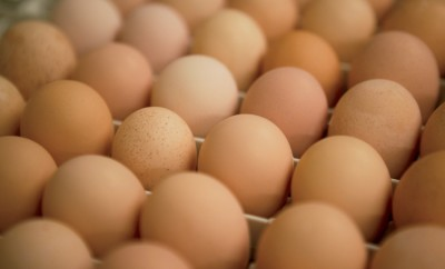 N.C. Egg Facts