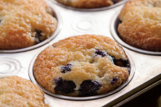 Dolly's Blueberry Muffins