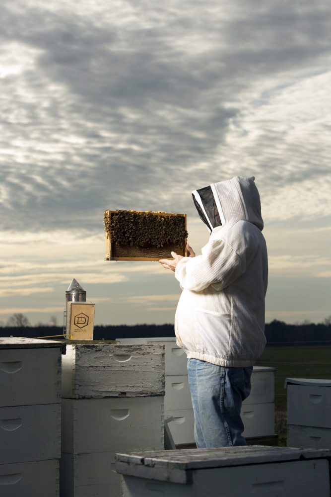 Farmers and Beekeepers