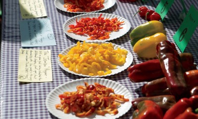 Pepper Festival in Chapel Hill