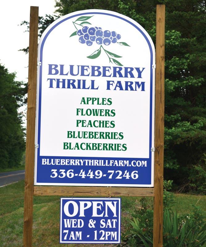 Blueberry Thrill Farm