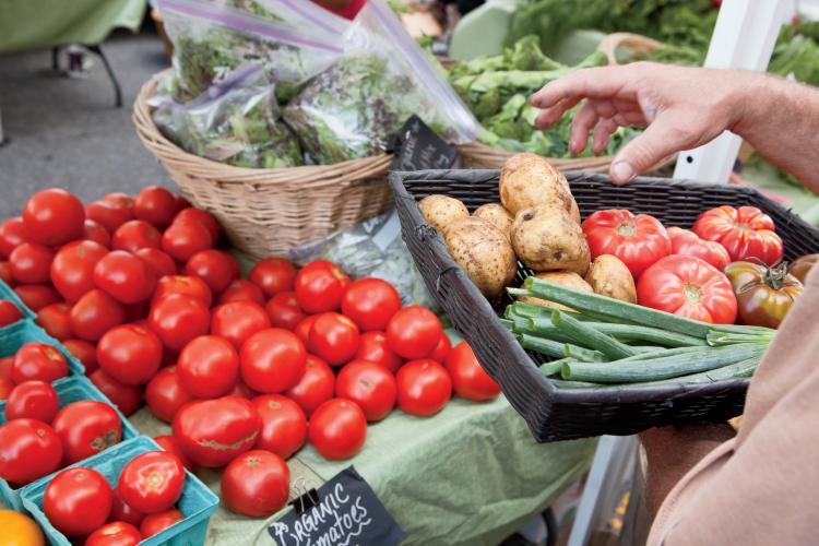 Riverfront Farmers' Market in downtown Wilmington, North Carolina