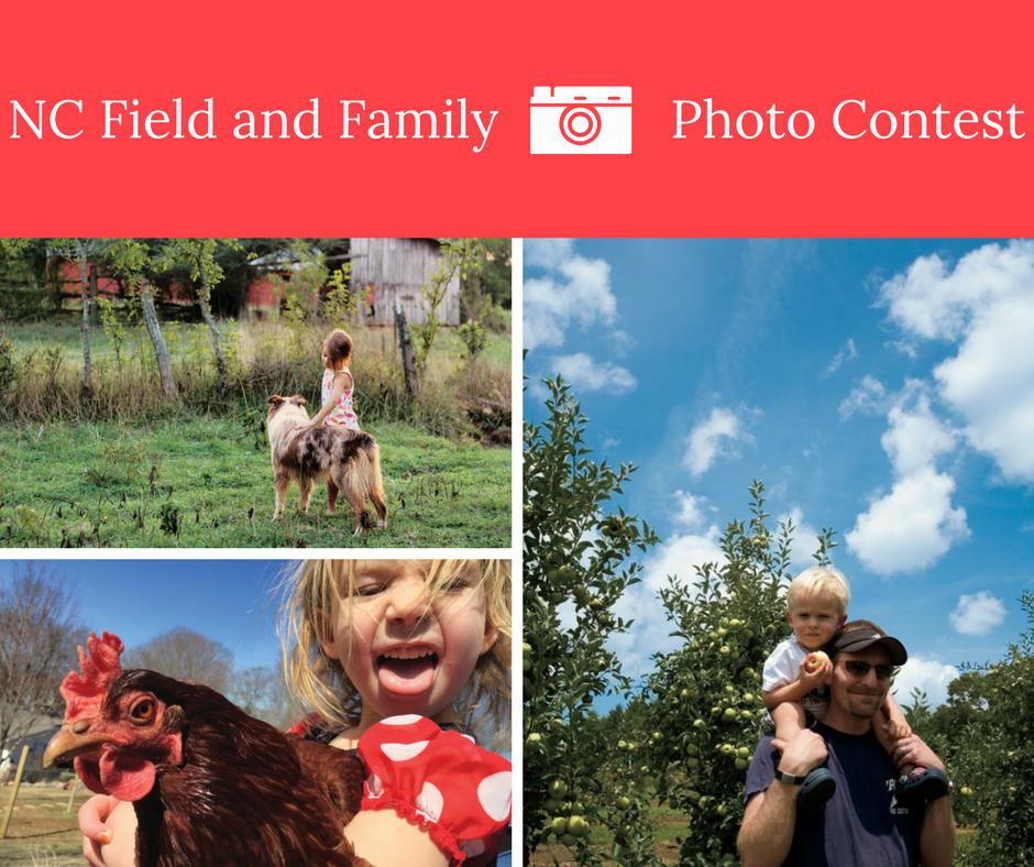 NCFF Photo Contest