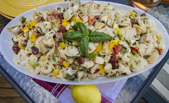no-mayo tortellini pasta salad recipe